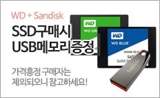 WD SSD / Sandisk SSD 구매하고 USB메모리 받으세요